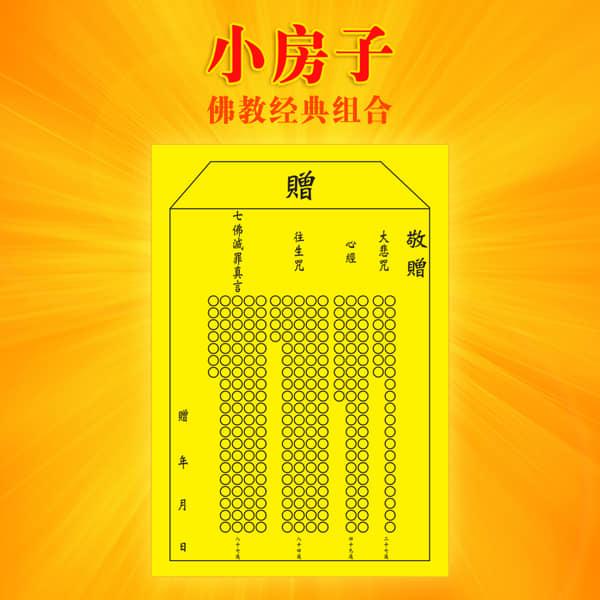 """""""卢台长""""观世音菩萨""""心灵法门""""共修"""